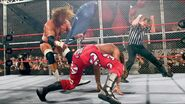 HBK V HHH Hell-in-a-Cell 04 1