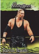 2003 WWE Aggression Kevin Nash 19