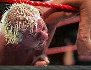 December 12, 2005 Raw.6