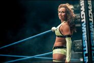 10176155 1 iMPACT WRESTLING UK Tour (Shanna)