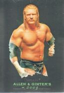 2008 WWE Heritage III Chrome (Topps) (Allen & Ginter) Triple H 4