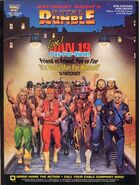 Royal Rumble 1991 Poster