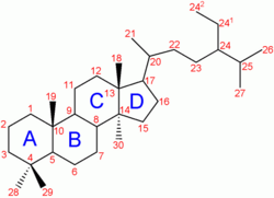 Steroid-nomenclature