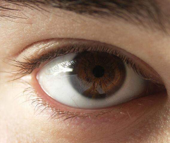 File:Menschliches Auge.jpg