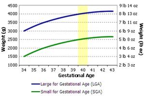Birth weight chart