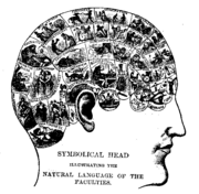 File:180px-Phrenologychart.png