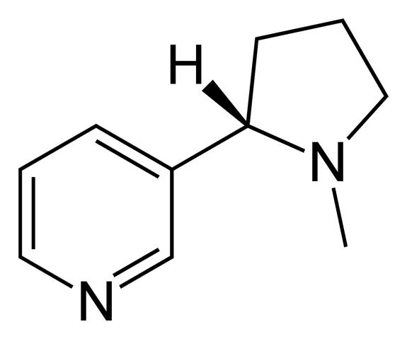 File:Nicotine-2D-skeletal.png