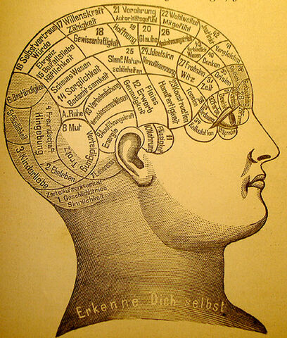 File:Phrenology1.jpg