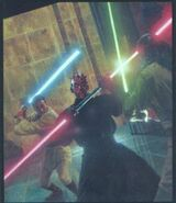 Maul fight
