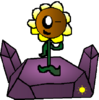 SunflowerPlantlanders