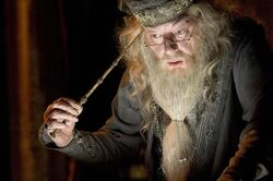 Dumbledore and Elder Wand