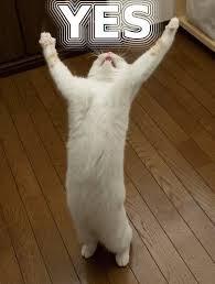 Ayé ayé ayé !!!! Youhouuuuuuuu !!!! Latest?cb=20150330230809