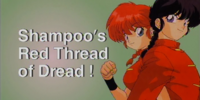 Shampoo's Red Thread of Dread!