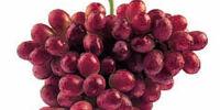 Emperor grape