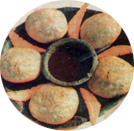 Kachori