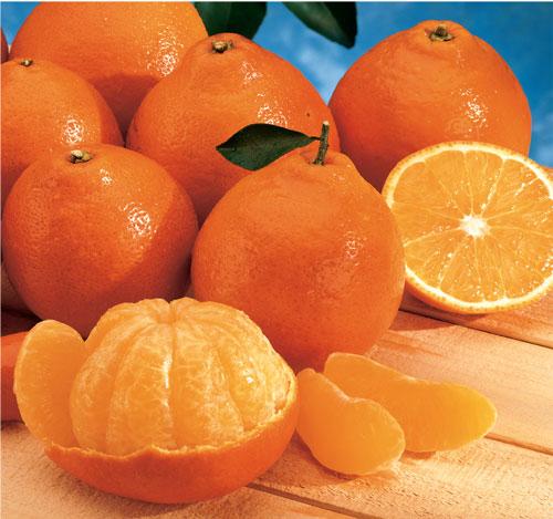Mandarin orange | Recipes Wiki | Fandom powered by Wikia