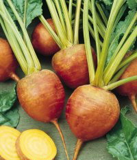 File:GoldenBeets.jpg
