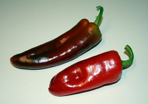 File:New Mexico red chile.jpg