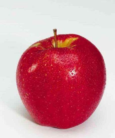 File:Apfel.jpg