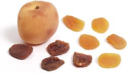 File:Apricot.jpg