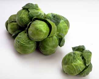 File:BrusselsSprouts.jpg
