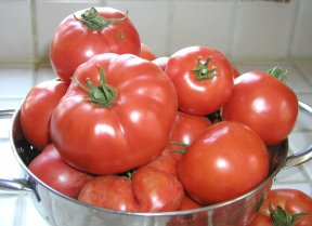 File:Tomatoes.JPG