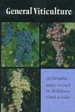 File:Viticulture.jpg