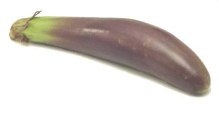 File:Filipino eggplant.jpg