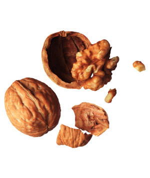 File:Walnuts 300.jpg