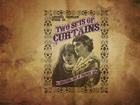 Advert - Two Sets of Curtains