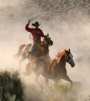 400px-Red-dead-redemption-20090508044341894