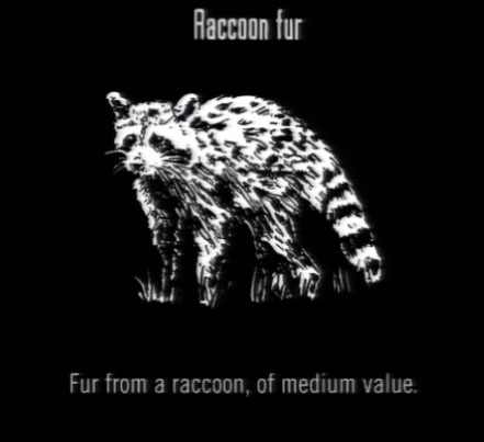 File:Animals Raccoon Fur.jpg