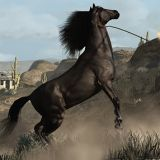 File:Red-dead-redemption-american-standardbred-location-guide.jpg