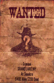 Wanted-poster-for-unknown-01