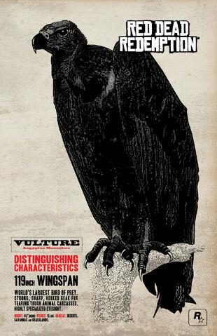File:Vulture-art.jpg