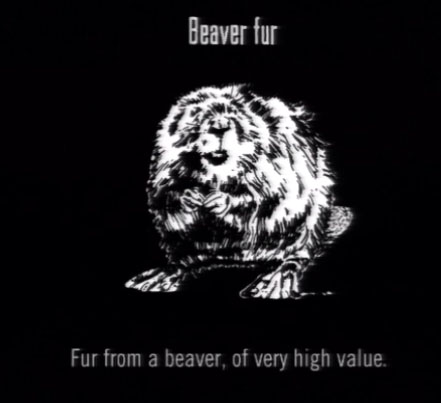 File:Animals Beaver Fur.jpg