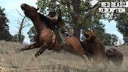 Rdr bear horse03