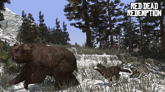 File:Rdr wolf bear.jpg