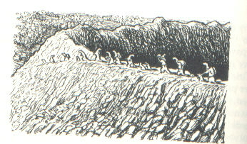 File:Deeplough.jpg