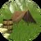 Portal settlements