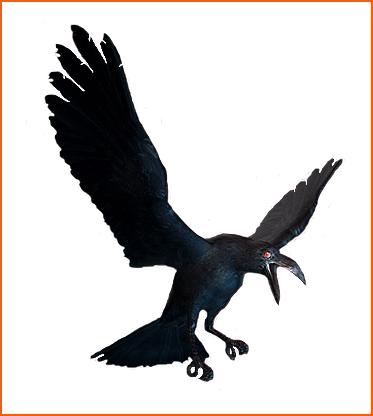 File:Crow ene.jpg