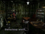 Taxidermy room (14)