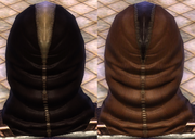 Leather Brown Dark Dye