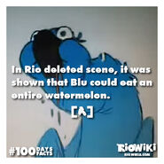 Rio-Wiki-100Days100Facts-099
