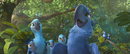 Anybodyelse.Rio2
