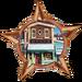 Bronze Badge Minnesota