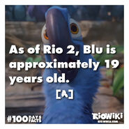 Rio-Wiki-100Days100Facts-094