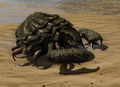 R2 Cr Giant Crab.png