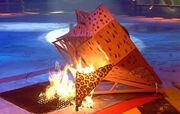 Hassocks Hog burns