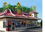 10-demian-mcdonalds-roof-1-85
